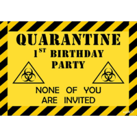 QUARANTINE ISOLATION PERSONALISED BIRTHDAY PARTY BANNER BACKDROP BACKGROUND